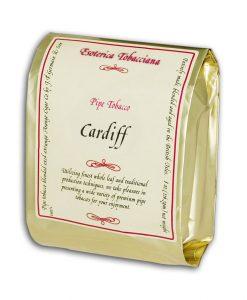 cardiff-bag